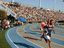 2008 CIF Track and Field State Championships