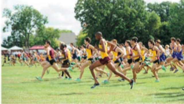 2012 Roy Griak Invitational race results