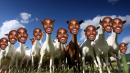 Mo-GOAT & XC Predictions that will make you sick - RJ 232
