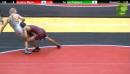 149 lbs 3rd Kendric Maple Oklahoma vs. Ian Paddock Ohio State