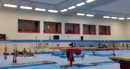 Stuck Triple Twisting Yurchenko- Max Whitlock