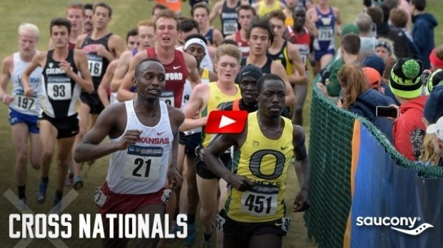 2014 NCAA Men's XC 10K - Full Race